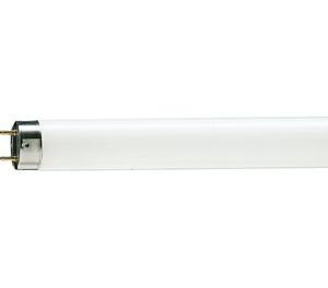 Philips LightingLAMP FLUORESCENT 10W WHITE