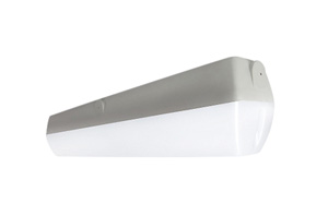 Philips Lighting VANDALITE 1 X 14W T5 CLEAR C/W4000K LAMP